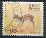 1981 – Mouse Deer – Tragulus Meminna – Animals – 10 February – 4.00 Rupees – Multicolored