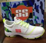 SS CAMO 10000 Nail Shoe