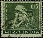 India 1965 -1967 Plucking Tea – 15 Cents – Dark Olive Green White