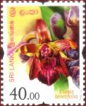 Sri Lanka 2016-10-07 Flowers Of Sri Lanka – Luisia Teretifolia Stamp – Rs 40.00
