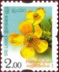 Sri Lanka 2016-10-07 Flowers Of Sri Lanka – Ranunculus Sagittifolius Stamp – Rs 2.00